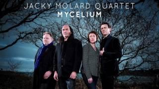 """Teaser """" Mycelium """" Jacky Molard Quartet"""