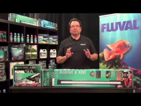 res d 233 clairage 224 fluval sea de haut rendement pour aquariums d eau de mer et r 233 cifaux