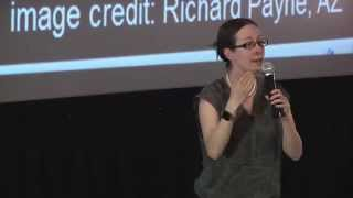 LSST Astronomy Talks  - Dr. Beth Willman