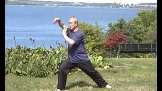 Taijiquan 88 forms  88式太极拳 2/2