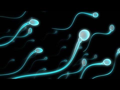 Những cách làm tăng chất lượng tinh trùng ở nam giới