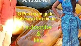 O Pori ne mogudu potlakaya thechinde DJ songs by Raj Mudiraj