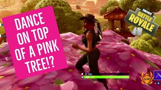 Dance on top of a PINK TREE! WEEK 4 SEASON 6! FORTNITE BATTLE ROYALE! PINK TREE LOCATION!