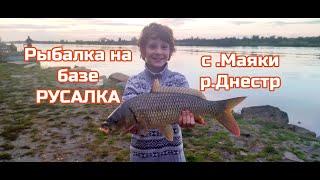 Рыбалка на базе Русалка р Днестр с Маяки