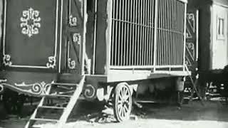 Charle Chaplin animals trap mime
