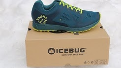 Icebug DTS3 BUGRIP In-Depth Running Shoe Review: Part 1