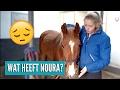 Het gaat niet zo goed met Noura... | Vlog #34 Video Klibi
