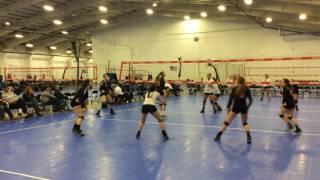Alexa Blunt Volleyball Highlights