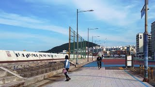 Walk on Tapdong in Jeju 제주 탑동 …