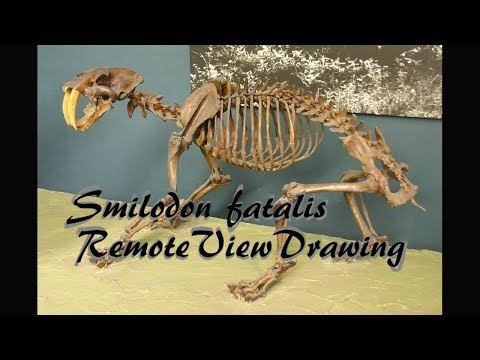 Smilodon Remote View Drawing