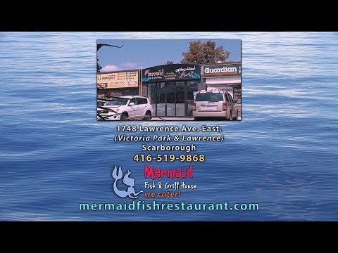 Mermaid Fish & Grill House - Seafood Restaurant Scarborough