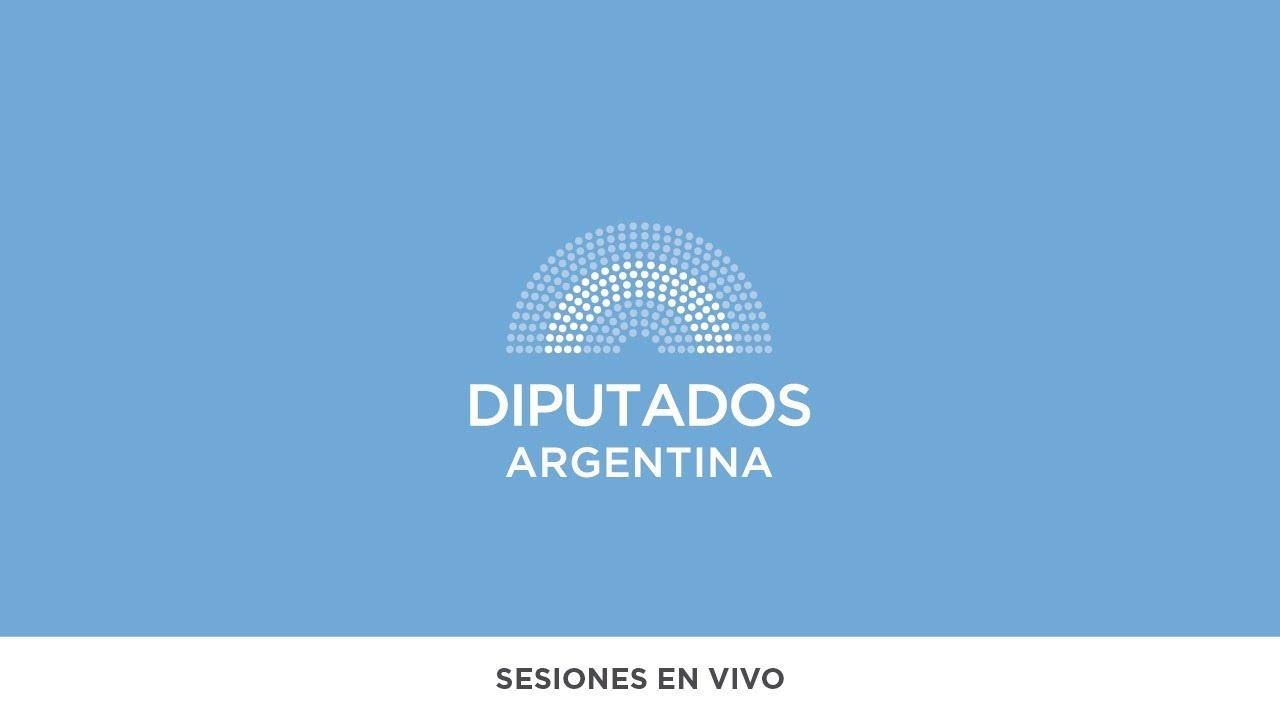 SESIÓN EN VIVO: H. Cámara de Diputados de la Nación - 10 de diciembre  de 2020
