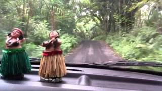 Bashams Driving In Puna Hawaii