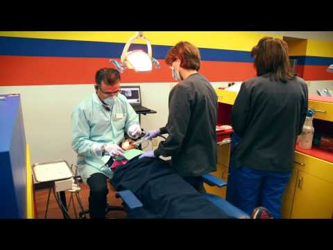 brandon-pediatric-dentist-|-why-parents-choose-us-813-452-6470