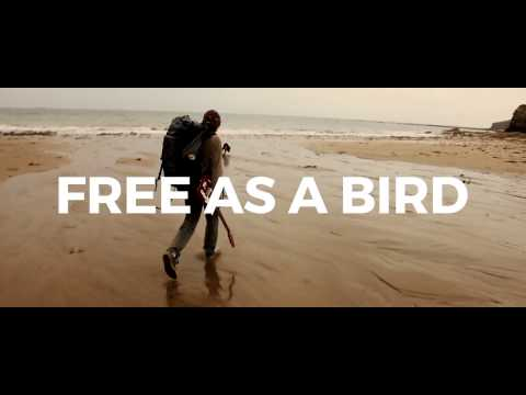 PARADOX - FREE AS A BIRD - MUSIC VIDEO TEASER