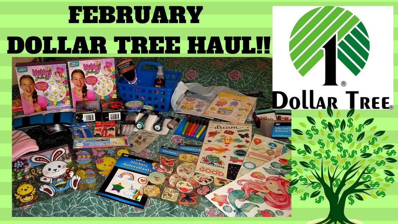 FIRST DOLLAR TREE HAUL OF FEBRUARY 2018 / NEW ITEMS GALORE! - YouTube
