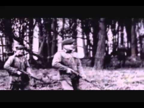 Inside LSD Full Length Documentary