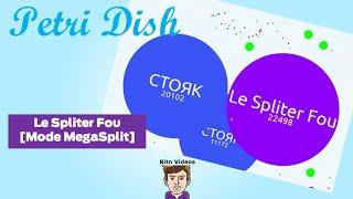 Petri Dish - Le Spliter Fou [Mode Megasplit]