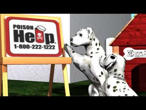 Ember911.com - Poison Education - Child Safety Program - Always Ask First