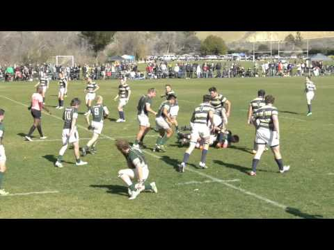 Cal VS Cal Poly Rugby Jan 2016