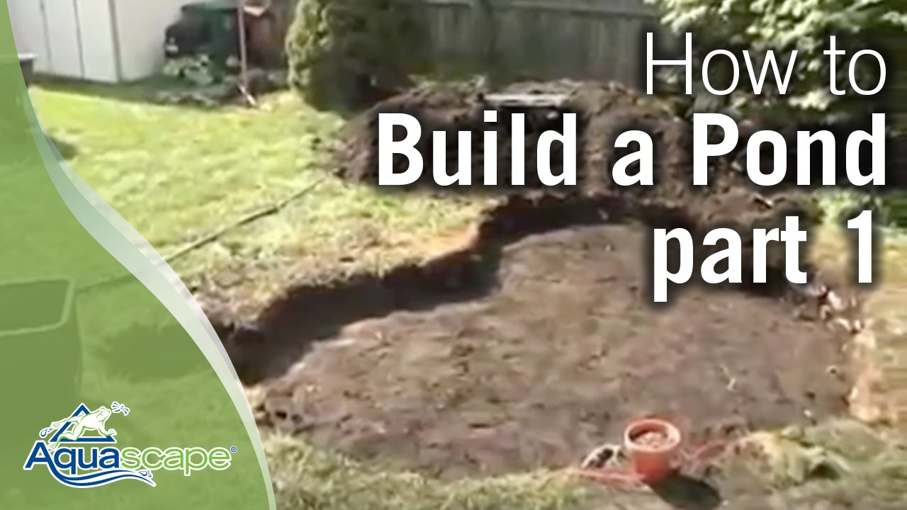 How to build a pond part 1 funnycat tv for Creating a pond