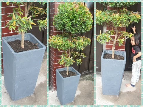 How to Make Beautiful Concrete Planters for Any Plants | DIY Cement Pot