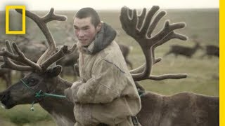 Reindeer Herders of the Russian Arctic | National Geographic