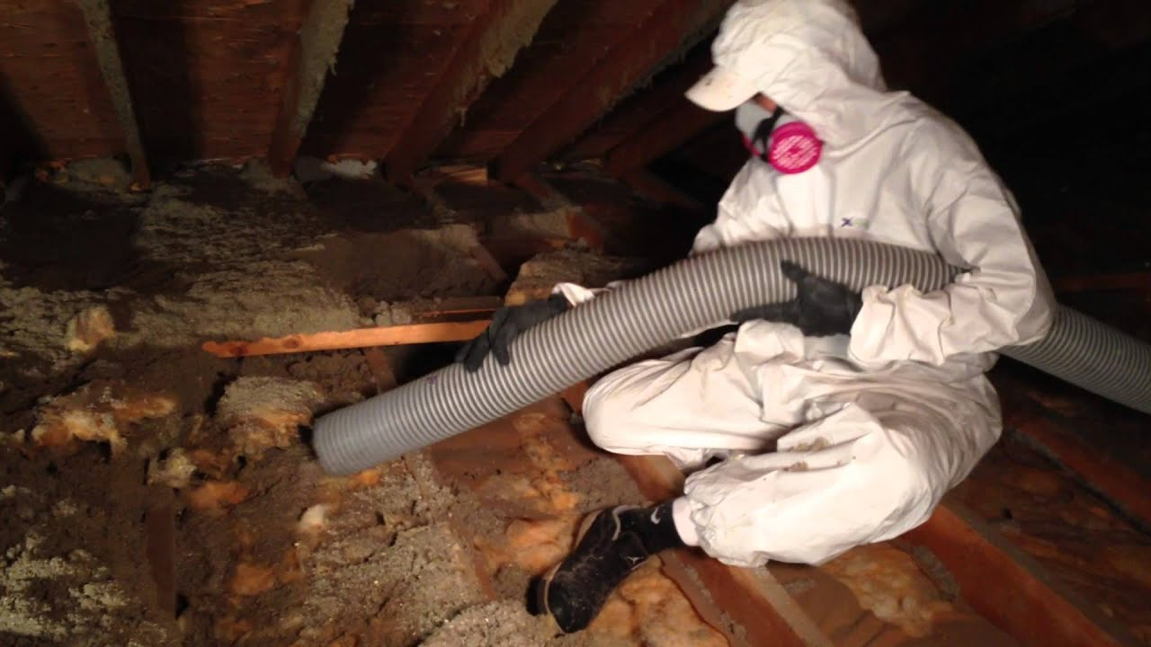 Removal Of Blown In Attic Insulation Four Seasons