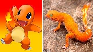 10 Pokémon Reales (POKÉMON GO) thumbnail