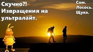 Извращения на ультралайт.  Турнир. [1440p] Русская рыбалка 4. Russian Fishing 4.