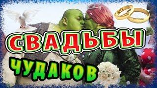 НЕОБЫЧНЫЕ СВАДЬБЫ - Свадьбы отличившиеся оригинальностью!!!