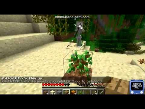 Minecraft Copii Copacii
