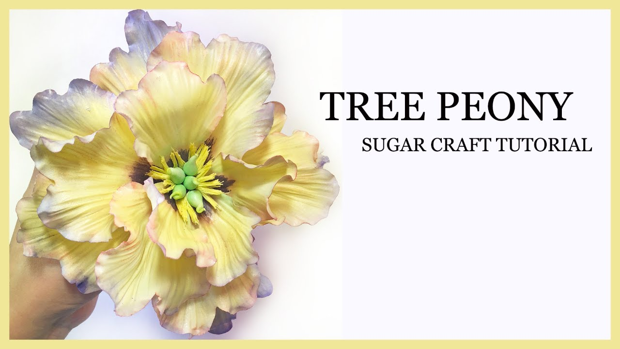 How To Make A Sugar Peony Tutorial Yellow Tree Peony Gumpaste
