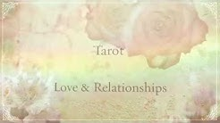 Live Tarot Reading In Walton, Nova Scotia