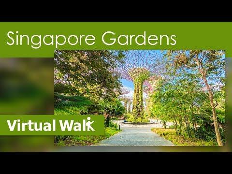 Virtual Walks - Singapore Botanical Gardens & Parks