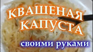 Квашеная капуста своими руками классический рецепт