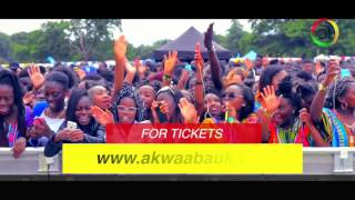 Ghana Party in the park 2016 Advert