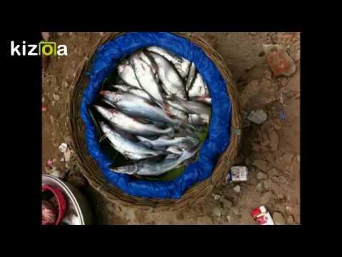 Dhono Dhanne Pushpe Bhora 777+ ~Bangla Patriotic Song
