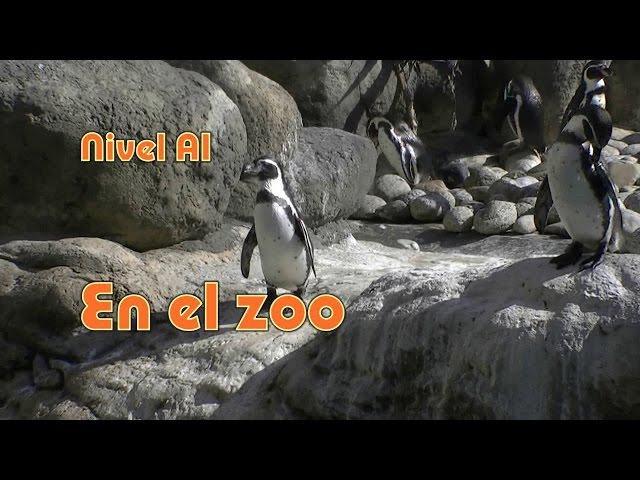 En el zoo: adjetivos