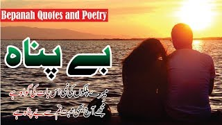 Bepannah quotes and poetry in Urdu Hindi with voice and images || life changing quotes collection