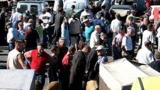 Foire aux veaux à St-Laurent de Chamousset (Rhône)