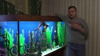 Аквариум,советы начинающим. Выпуск-2: грунт в аквариуме(Если есть возможность помочь на развитие канала: Яндекс деньги 410013000630022 WebMoney R294719574431 (рубли) ..., 2015-01-06T16:59:03.000Z)