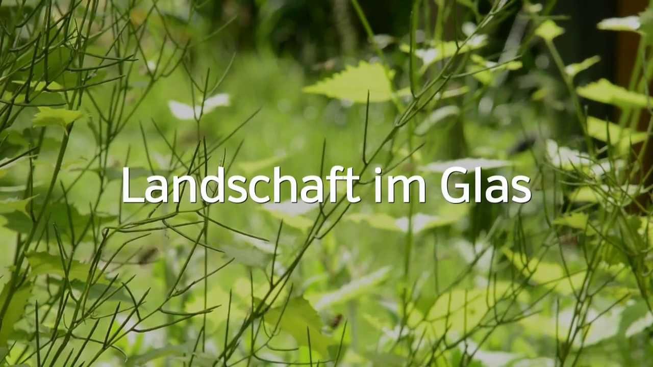 Landschaft im Glas  Imkerei Gerhardt  YouTube