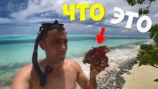 Выживание на необитаемом острове [3-часть] Делаю гавайку Что я поймал