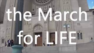 The March for Life 2018
