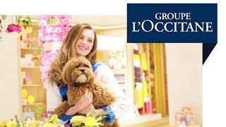 إنشاء تجربة المتجر الرئيسي في المملكة المتحدة مجموعة لوكسيتان