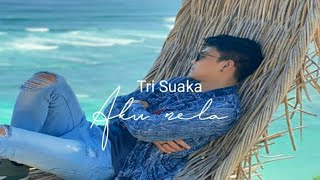 Gambar cover Aku Rela - Tri Suaka (Cover video)