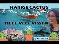 een HARIGE CACTUS en HEEL VEEL MOOIE VISJES!! #135