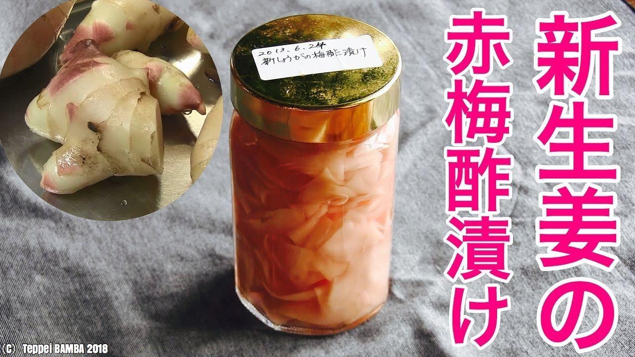 紅生姜 サワー 作り方