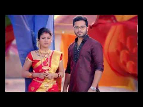 Vijay TV Raja Rani  Semba Karthik BGM